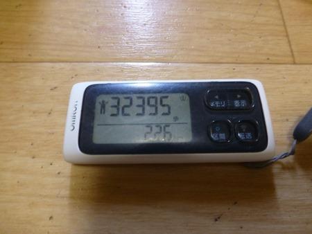P1060541