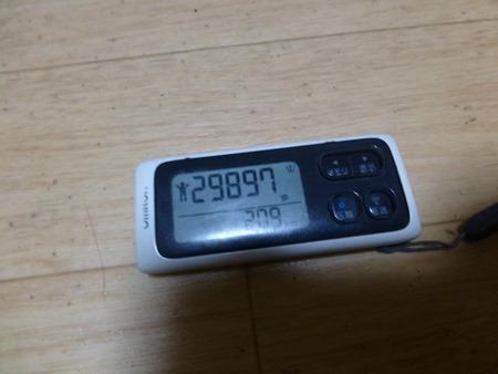 P1070378